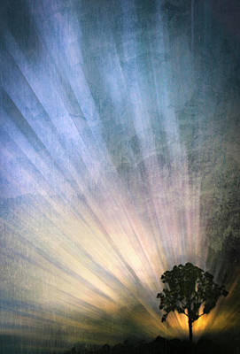 Photograph - Spiritual Morning On The Hill by Debra and Dave Vanderlaan