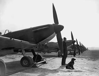 Photograph - Spitfires At Duxford by Fox Photos