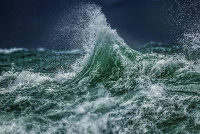 Photograph - Splash by Werner Kaffl