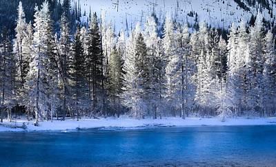 Photograph - Splendor Of  Winter Silence by Karen Wiles