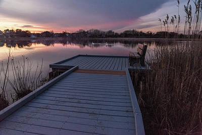 Photograph - Spot The Swans by Kristopher Schoenleber