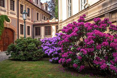 Photograph - Spring Blooms In Kolowrat Garden Prague 10 by Jenny Rainbow