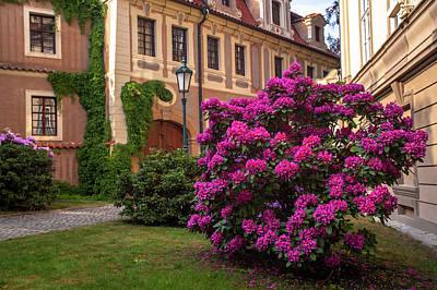 Photograph - Spring Blooms In Kolowrat Garden Prague 7 by Jenny Rainbow