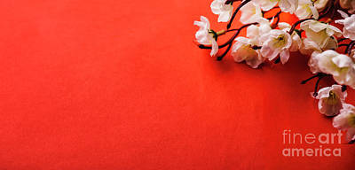 Photograph - Spring Blossom Border Over Red Background With Copyspace. Chines by Jelena Jovanovic