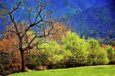 Photograph - Spring Colors, Shenandoah Valley by Bill Jonscher