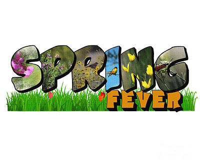 Photograph - Spring Fever Big Letter by Colleen Cornelius