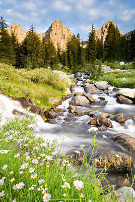 Scenic Photograph - Spring Flowers And Flowing Water Below by Josh Miller Photography