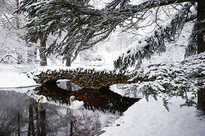 Photograph - Spring Grove Snow by Ed Taylor