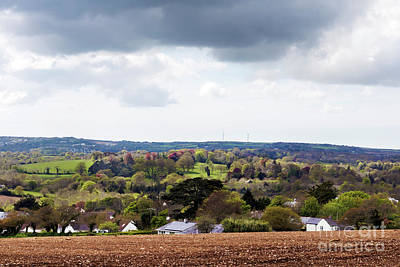 Photograph - Spring In Cornwall by Terri Waters