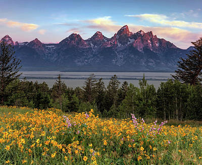 Spring In The Tetons Art Print by Leland D Howard