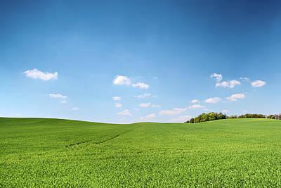 Photograph - Spring Landscape by Hadynyah