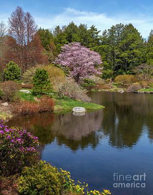 Photograph - Spring Silence by Karin Pinkham