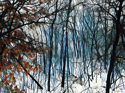 Photograph - Spring Thaw by Tim Nyberg