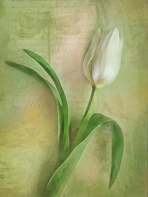 Digital Art - Spring Tulip Montage by Jill Love