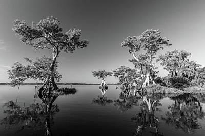 Photograph - Spring Vistas At The Lake by Stefan Mazzola