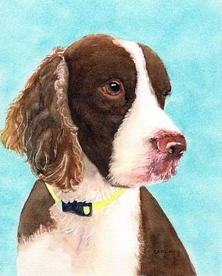 Painting - Springer Spaniel Portrait by CarlinArt Watercolor