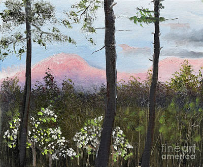 Painting - Springtime At Pink Knob In Ellijay by Jan Dappen