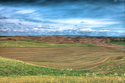 Photograph - Springtime In The Palouse by David Patterson