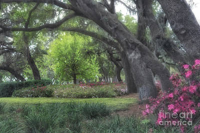 Photograph - Springtime In The Park by Mary Lou Chmura