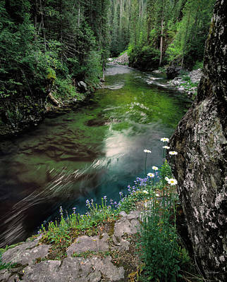 Photograph - St Joe River by Leland D Howard