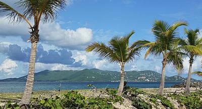 Photograph - St. John View by Climate Change VI - Sales