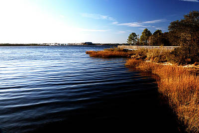 Photograph - St. John's River by Eric Christopher Jackson