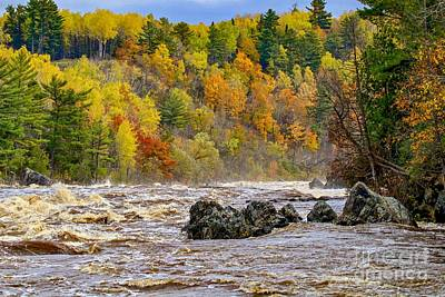 Photograph - St. Louis River At Jay Cooke by Susan Rydberg