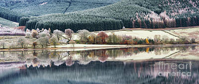 Photograph - St Marys Loch Seaonal Reflections by Tim Gainey