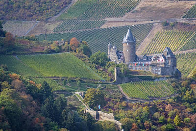 Photograph - Stahleck Castle And Vineyards In Germany by Mary Lee Dereske