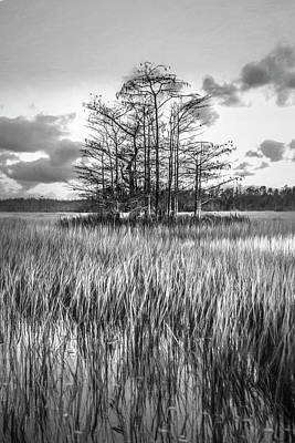Photograph - Standing On The Edge Of Sunset In Black And White by Debra and Dave Vanderlaan