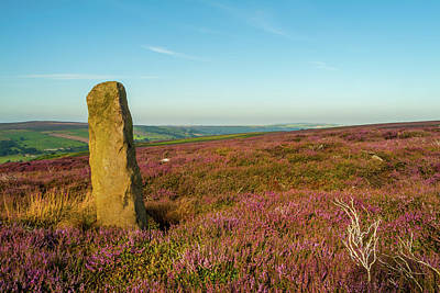 Photograph - Standing Stone, Danby, Yorkshire by David Ross