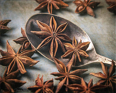 Photograph - Star Anise 4808 By Tl Wilson Photography by Teresa Wilson