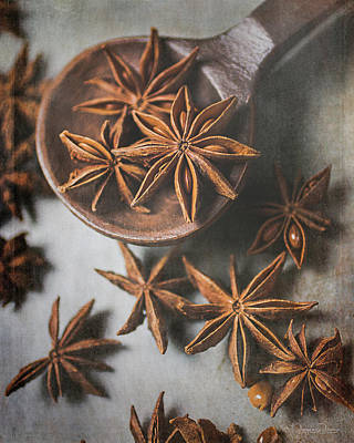 Photograph - Star Anise 4816 By Tl Wilson Photography  by Teresa Wilson