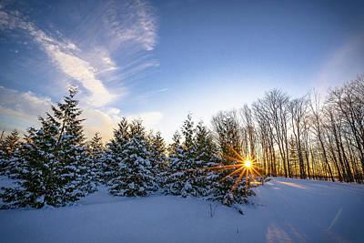 Photograph - Star Bright by David Heilman
