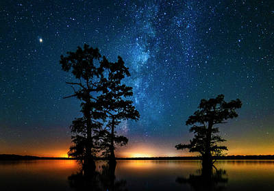 Photograph - Star Gazers by Andy Crawford