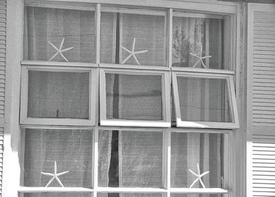 Photograph - Starfish Windows by JAMART Photography