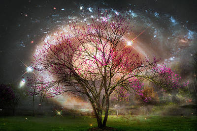 Photograph - Starry Spring Night by Debra and Dave Vanderlaan