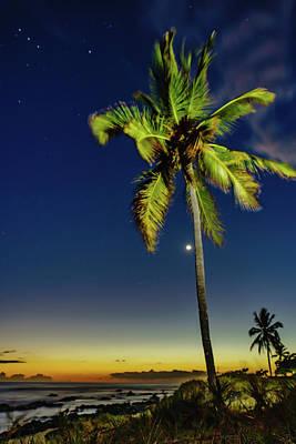 Photograph - Stars - Palms - Moon -sea by John Bauer