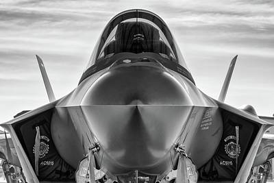 Photograph - Stealthy Nose by Chris Buff