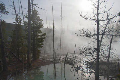 Photograph - Steam In Yellowstone by Mark Duehmig