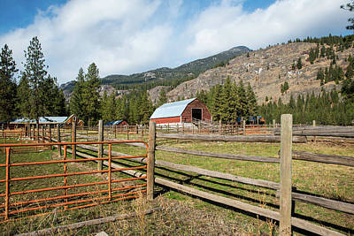 Photograph - Steel And Wood Corral Fences by Tom Cochran