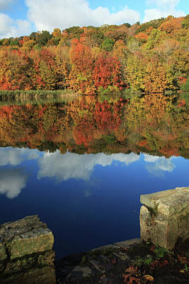 Photograph - Stepping Into Autumn by Karol Livote