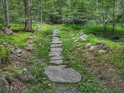 Photograph - Stepping Stone Path - Kinnelon by Christopher Lotito