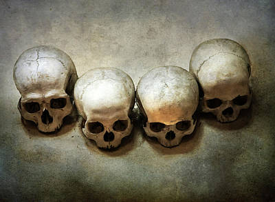 Photograph - Still Life With Four Skulls by Jaroslaw Blaminsky