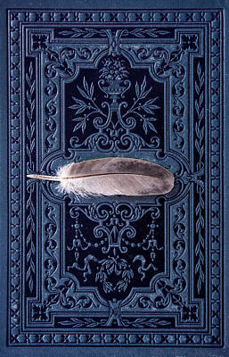 Photograph - Still Life With Grey Feather by Jaroslaw Blaminsky