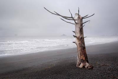 Photograph - Still Standing by Vladimir Grablev