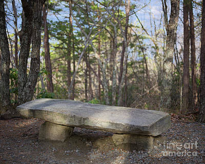 Photograph - Stone Bench by Patrick M Lynch