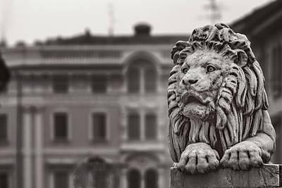 Photograph - Stone Lion by Roberto Pagani