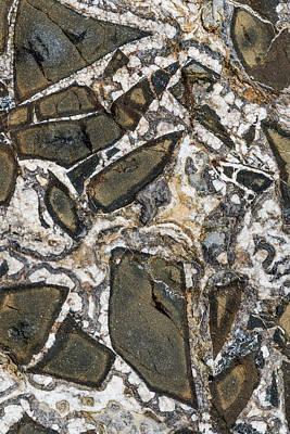 Photograph - Stone Pattern by Robert Potts