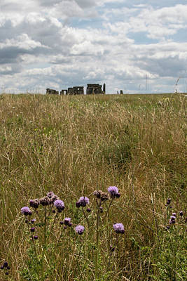 Photograph - Stonehenge And Flowers by John McGraw